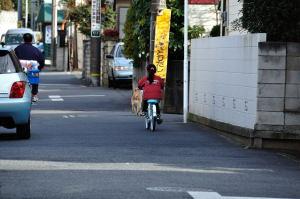 よく言うことを聞く犬を自転車で散歩に連れる女の子