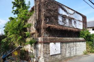 蔦が枯れて古い看板が見えてきた閉ざされた商店