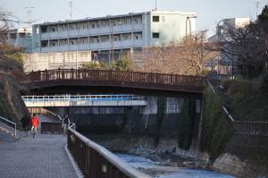 桜の名所に架かる平成みあい橋を遠くから眺める