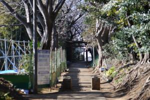 斜面の補強工事が始まった白幡神社の参道