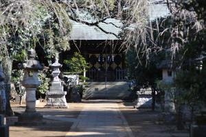 135mmで見る白幡神社拝殿