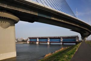かつしかハープ橋の下に見える上平井水門