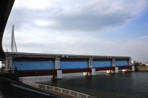 防潮水門ということはこちら側の下流からの水が奥に入り込まないようにするためのもの