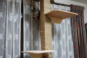 支柱には麻テープを下から左巻きと右巻きで2回巻く