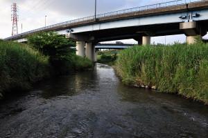小橋から根木名川から今来た下流側を見る