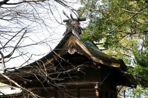 葛飾八幡宮の本殿の屋根