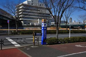 東大島駅を降り寒風の中中川沿いに歩く