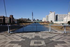 百合鴎が集まるふれあい橋から東京スカイツリー