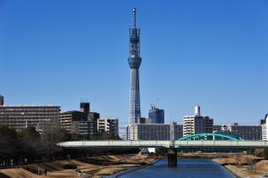 中川の先に見える東京スカイツリー