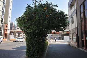 岩本町交番