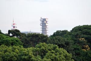 北の丸公園から見える総務省と警視庁の塔