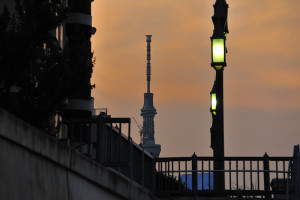 清洲橋の街灯と清洲橋の向うに見える東京スカイツリー