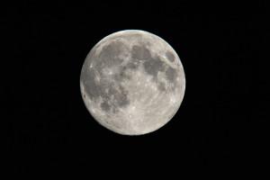 望月(十五夜)