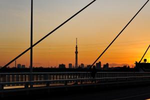 高砂橋に東京スカイツリー