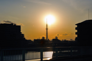 奥戸橋から夕日