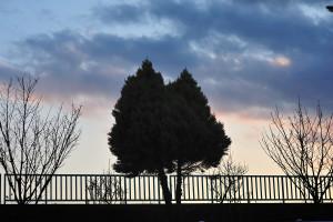 立石熊野神社の近く