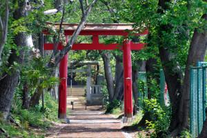 白幡神社の赤い二の鳥居