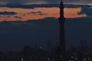 東京スカイツリーもシルエットになる
