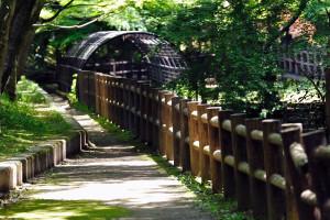 新緑の遊歩道脇を水路が走る