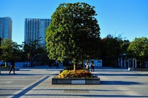 国際展示場駅前の広場