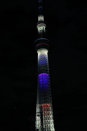 2020 年オリンピック・パラリンピック招致特別ライティング