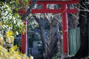 白幡神社二の鳥居