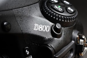 D-800