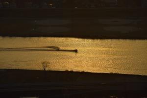 江戸川水上スキー