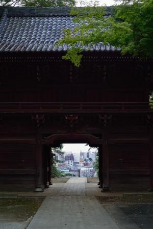 Deva gate