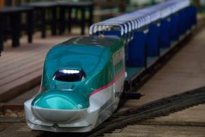 Mini railway