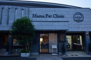 Mama pet clinic