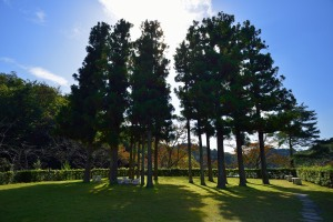 Garden of the Kyoto International Conference Hall