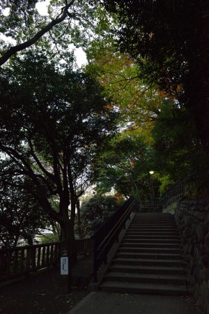 Asukayama Park