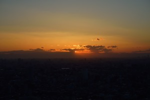 Ichikawa City I-Link Town Observation Deck