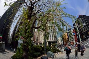 Nihonbashi-Kitadume
