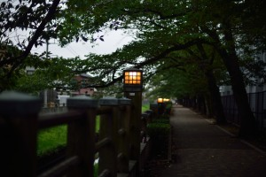 Lantern along the Mama River