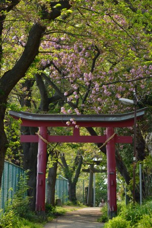 The second torii of Shirata Shrine